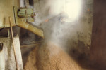 1991 alter Maischbottich beim Ausrebern